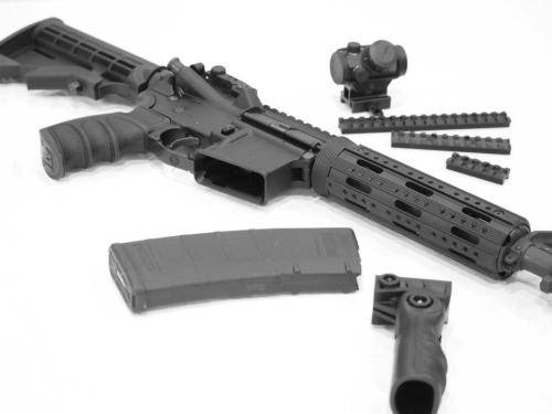 AR15 Black and White 02